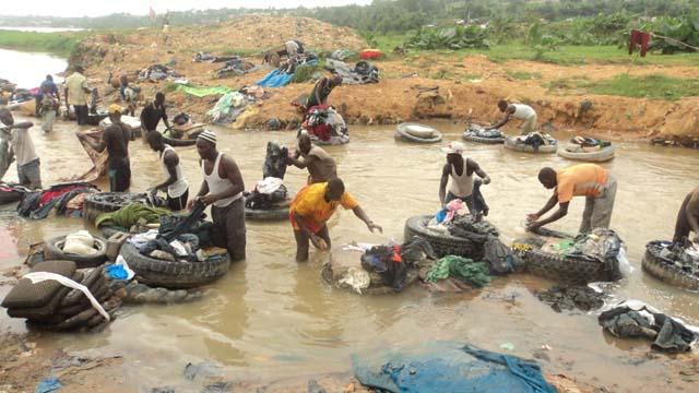 Des Fanicos en pleine activité dans la rivière du Banco
